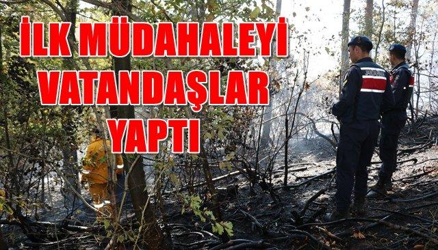 Ormanlık alandaki yangın ekiplerce söndürüldü