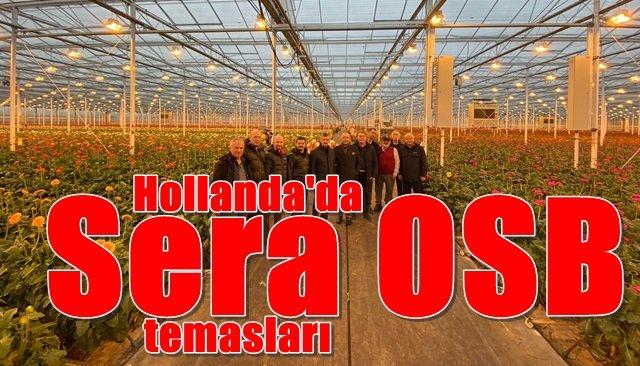 """Hollanda'da """"Sera OSB"""" temasları"""