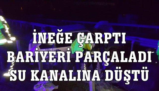 İNEĞE ÇARPTI, BARİYERİ PARÇALAYIP SU KANALINA DÜŞTÜ