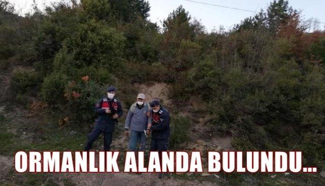 ORMANLIK ALANDA BULUNDU...