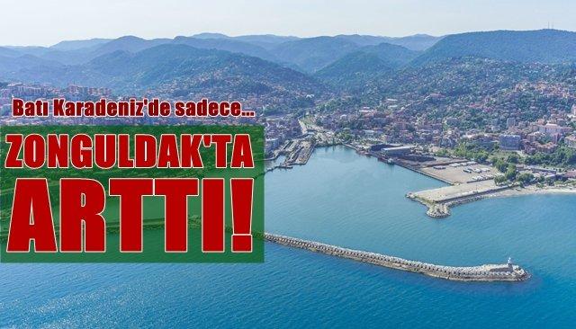 Sadece Zonguldak'ta arttı