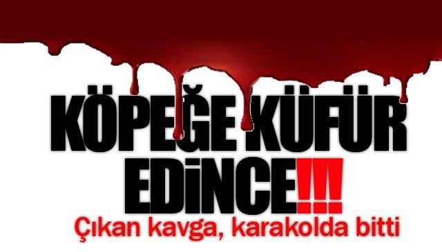 KÖPEĞE KÜFÜR EDİNCE!
