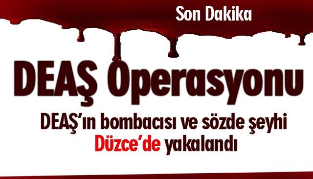 Düzce'de DEAŞ üyelerine şafak operasyonu