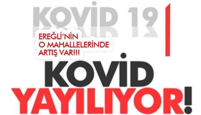 EREĞLİ'NİN O NOKTALARINDA ARTIŞ VAR!!!