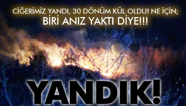 CİĞERİMİZ YANDI; 30 DÖNÜM KÜL OLDU!!!