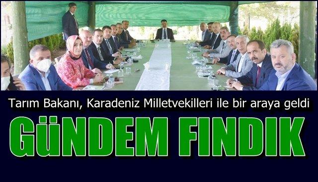 Tarım Bakanı, Karadeniz Milletvekilleri ile bir araya geldi... GÜNDEM: FINDIK!