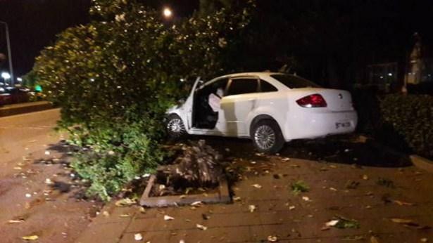 Devrilen ağaç otomobili pert etti