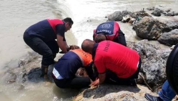 Kayalara sıkışan eşeği itfaiyeciler kurtardı